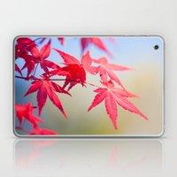 Spring Maple Tree 1012 Laptop & iPad Skin