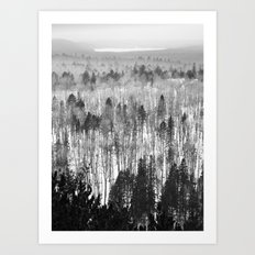 Algonquin Park in Winter, The Lookout Trail Art Print