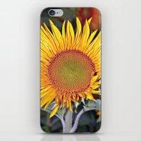 Floating SUN iPhone & iPod Skin