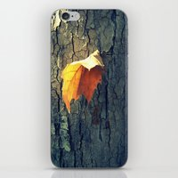 A Lonely Leaf iPhone & iPod Skin
