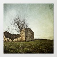 not just naked branchs and falling stones Canvas Print