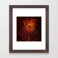 Red Plume  Framed Art Print