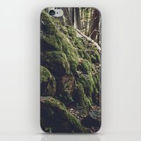 Green forest iPhone & iPod Skin