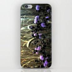 Hidden Fields iPhone & iPod Skin