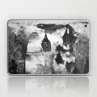Cave Laptop & iPad Skin