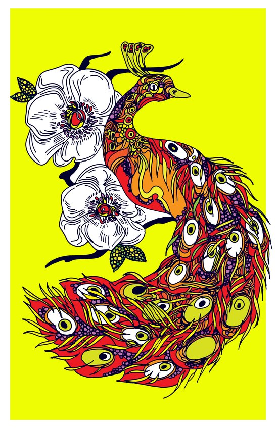 My peacock Canvas Print