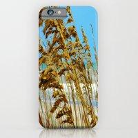 Beyond The Sea Grass Lie… iPhone 6 Slim Case