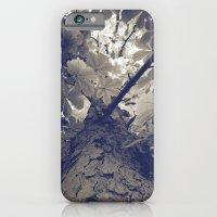 Up III iPhone 6 Slim Case