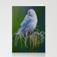 Preen Stationery Cards