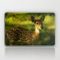 Indian Deer Laptop & iPad Skin