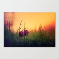 Better together Canvas Print