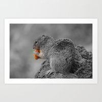 Squirrel BW Art Print
