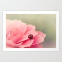 Ladybird On Flower Art Print