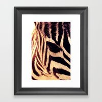 Zazu the Zebra Framed Art Print