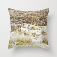 Under The Winter's Sun Throw Pillow
