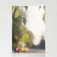 Summer Light Stationery Cards