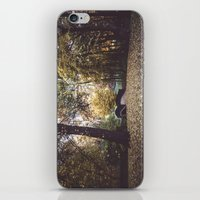 Magical Garden iPhone & iPod Skin