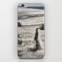 The Lonely Path iPhone & iPod Skin