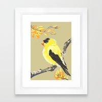 Yellow Finch Framed Art Print