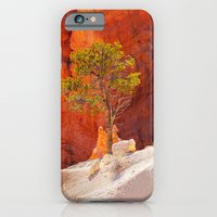 Bryce Canyon. iPhone 6 Slim Case