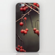 almost winter iPhone & iPod Skin