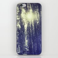 Sun Through The Forest iPhone & iPod Skin