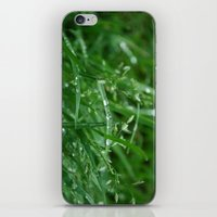 Grass iPhone & iPod Skin