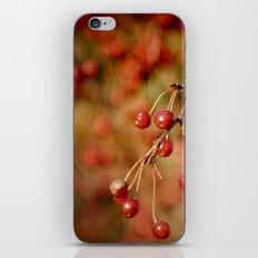 Cranberries iPhone & iPod Skin