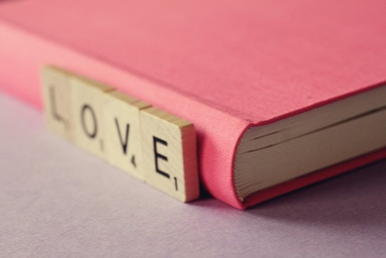 journal love Art Print