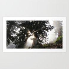 Hike the NW Art Print