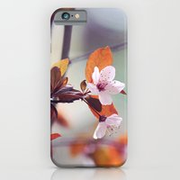 iPhone & iPod Case featuring Cherry Blossom by Bottle of Jo