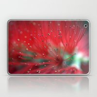 Callistemon Macro 2413 Laptop & iPad Skin