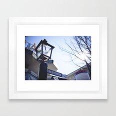 themepark  Framed Art Print