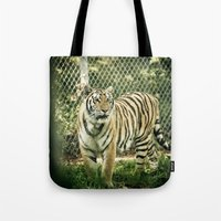 Tiger through the fence Tote Bag