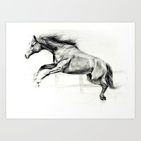 horse Art Prints featuring Horse by Anna Shell