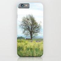 Field Below iPhone 6 Slim Case