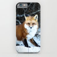 iPhone & iPod Case featuring One Fox by Tosha Lobsinger is my Photographer