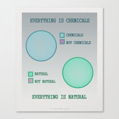 Everything Is.. Canvas Print