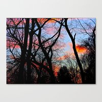 Sunset Through the Tangled Trees Canvas Print
