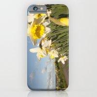 Daffodils on the Moors  iPhone 6 Slim Case