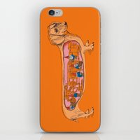 Secrets of the Dachshund  iPhone & iPod Skin