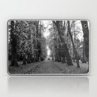 Leafy Walk Laptop & iPad Skin