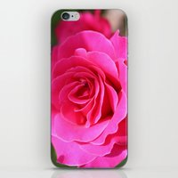Rose 2 iPhone & iPod Skin
