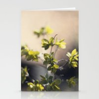 UNTITLED MACRO 01 Stationery Cards