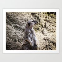 Posing and Sniffing Art Print