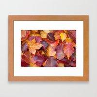 Autumn's Carpet Framed Art Print