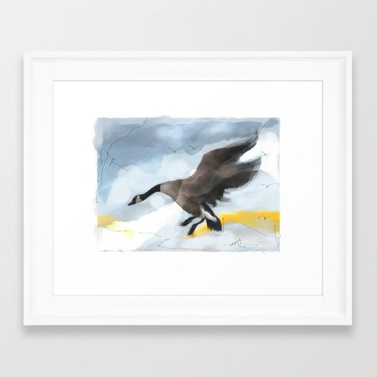 Canada Goose Landing...digital sketch Framed Art Print