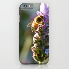 A Visitor iPhone 6 Slim Case