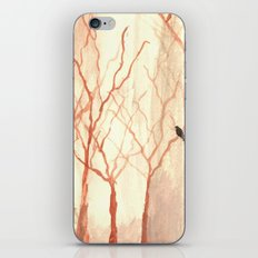 A Chance for Hope iPhone & iPod Skin