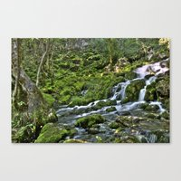 Natural Stream Canvas Print